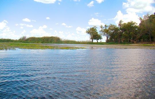 Laguna-Soto