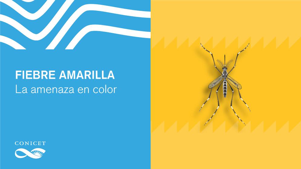 Placa-FiebreAmarilla_