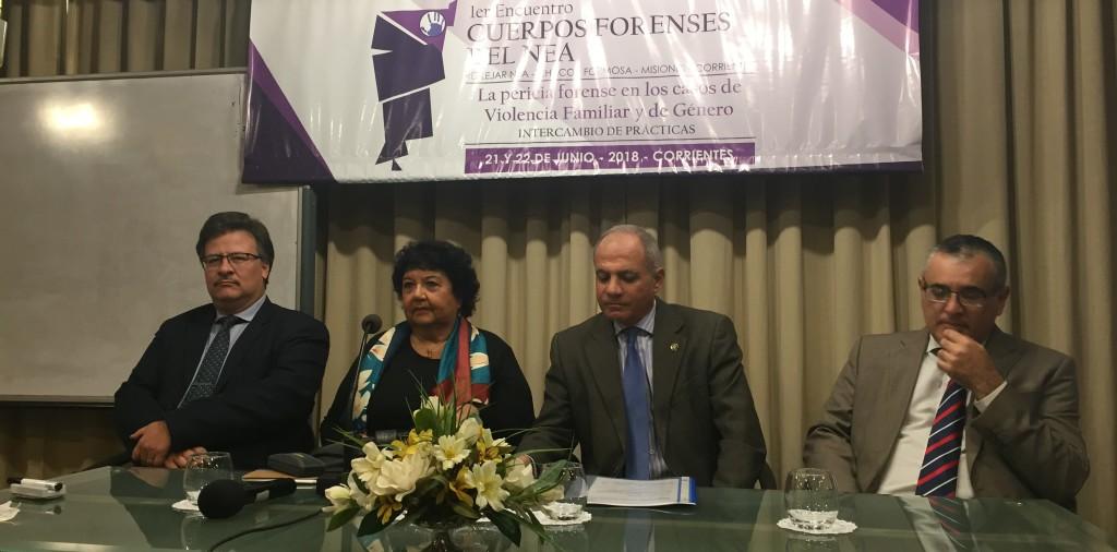 La apertura del encuentro se realizó el jueves y Dora Barrancos participó junto al presidente y ministros del Superior Tribunal de Justicia de Corrientes. FOTO: CONICET Nordeste